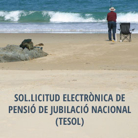 solicitud.electronica.pension